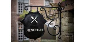 Nenuphar - logo