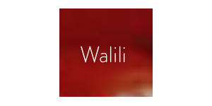 Restaurant Walili - logo